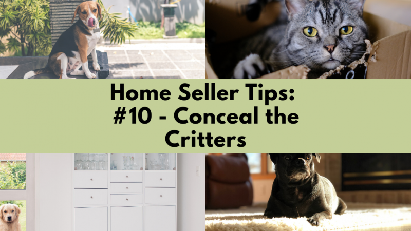 Home Selling Tip: Conceal the Critters