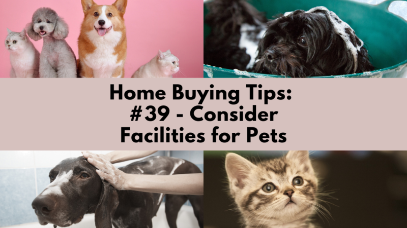 Home Buying Tip: Consider Facilities for Pets