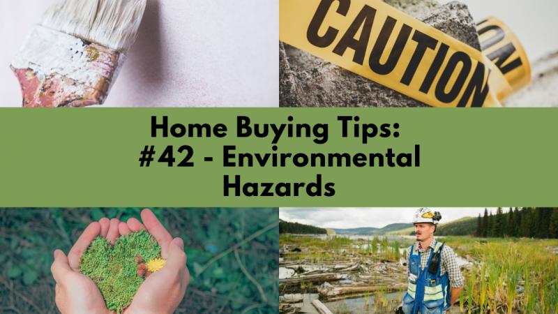 Home Buying Tip:  Environmental Hazards
